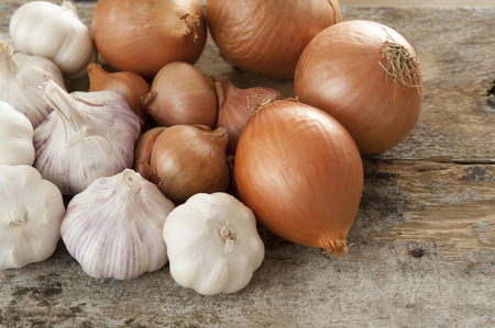 High Angle Close Up Still Life of Harvest of Fresh Onions and Garlic Bulbs on Rustic Wooden Table with Copy Space