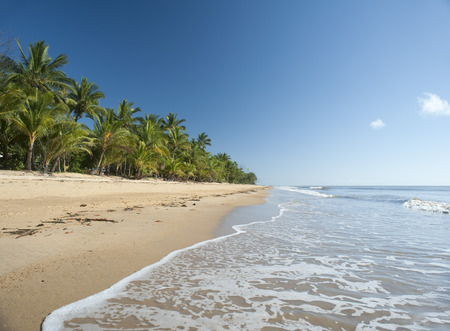 Idyllic tropical getaway at Mission Beach, Queensland, Australia with gentle surf lapping golden sand fringed with lush vegetation and palm trees Stock Photo
