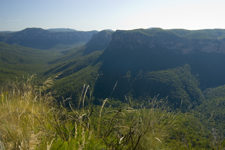 forested: Landscape view of the scenic forested Grose Valley formed by the Grose River in the Blue Mountains, NSW, Australia in a travel concept Stock Photo
