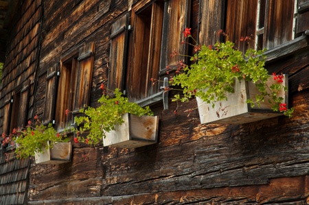 allgau: Old house with flowers