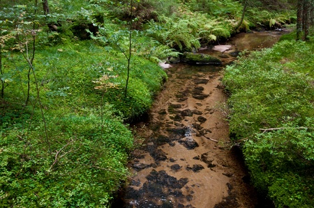 A stream in a German conversation are Stock Photo - 9965097