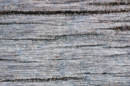 Old wood is bleached from the sun photo