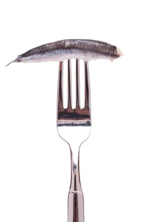 Sardine in oil in fork and white isolated
