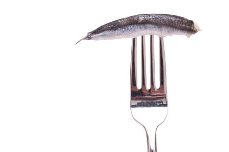 White isolated sardine on a fork