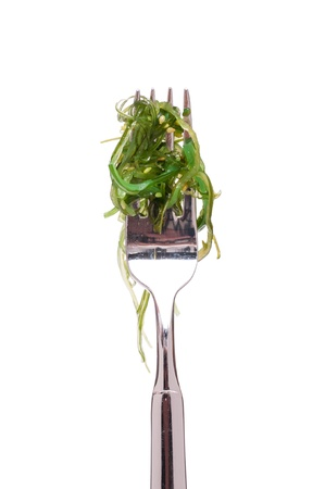 Green seaweed on a fork in front of a white background