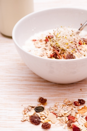 Bicher muesli with sprouts, cereals and milk photo
