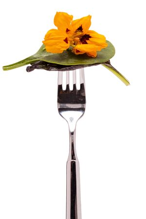 Leaf salad with flower of indian cress on a fork photo