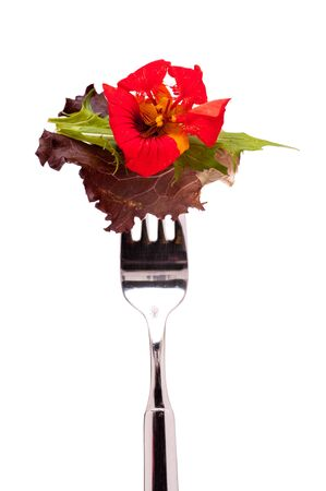 Red flower of nasturtium with leaf salad on a fork photo