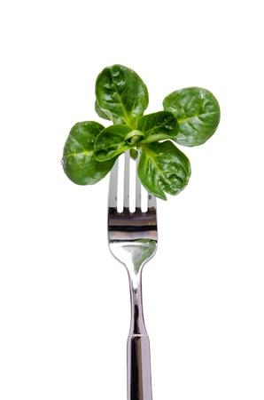 フォークの上の緑コーンのサラダ