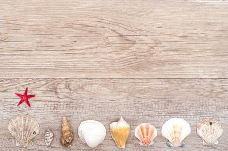 Red starfish and sea shells on an old weathered wooden board photo