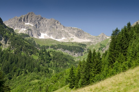 tal: Mountain with rocks and firs in the valley of Tannheim in Austria