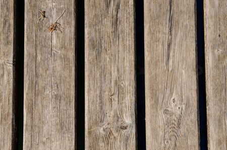 flaws: Dried old weathered wooden boards as background