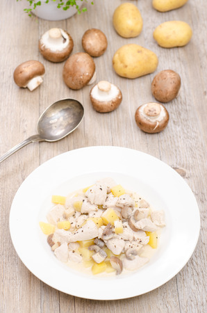 fricassee: Filet from turkey as fricassee in vertical format