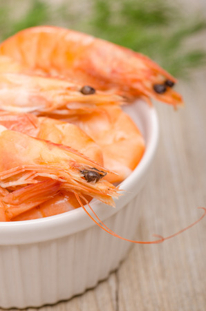 Close up shrimps in a white bowl of porcelain photo