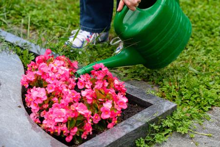 女性は墓地で墓に花に水をやります