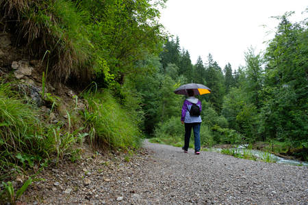 Woman with umbrella in the rain on a hiking trail in a forest Stock Photo