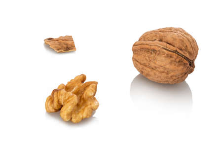 Walnut nut with nutshell close-up white isolated