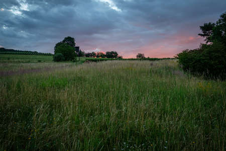 Meadow with hunter high seat and dark sky dawn