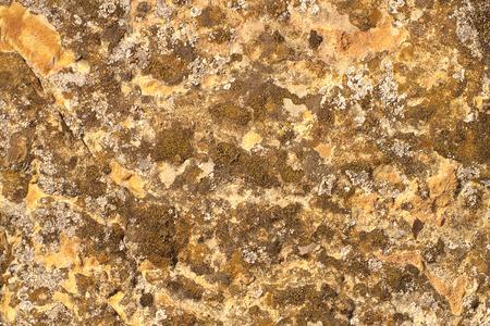 distinct: Mountain stone with distinct texture and lichen