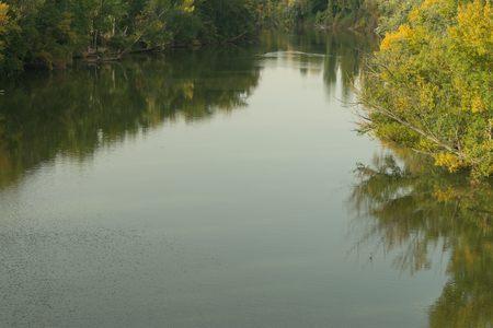 a fast river with abundant vegetation on its banks