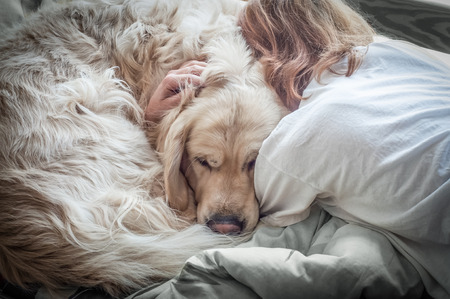 hag: girl and dog hag on the bed Stock Photo