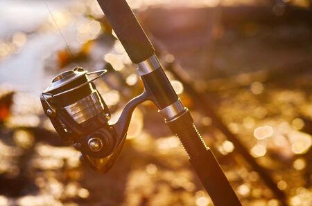 釣り: 釣り