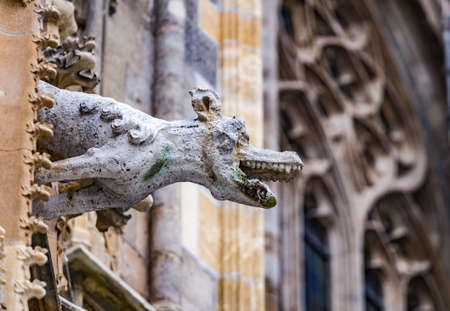 Grotesque gargoyle water spout sculpture on facade of gothic medieval St. Stephen's Cathedral or Stephansdom in Vienna, Austria Banque d'images