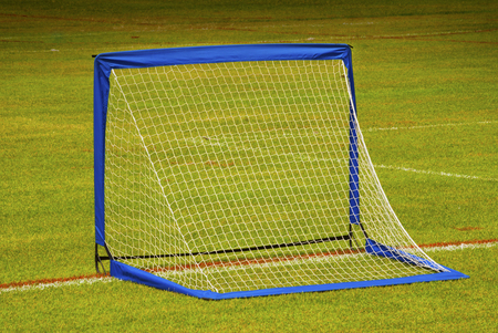 goalline: A view from behind the net on a soccer pitch.