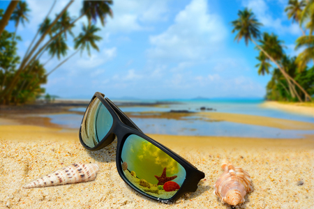 Sun Glasses and shells on the sea sand