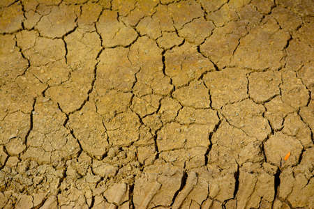 cracked clay ground into the dry season 免版税图像
