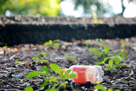 plastic bottle lies on grass in nature like garbage
