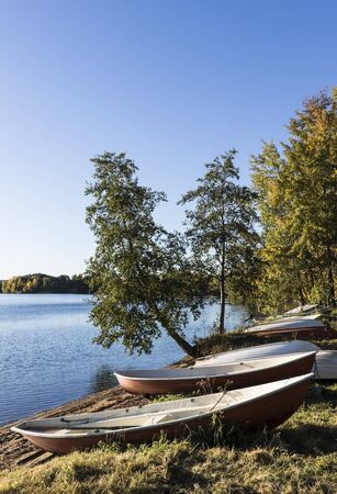 yellow alder: Rowing boats on a lakefront