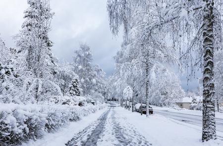 sidewalks: Snowy sidewalk