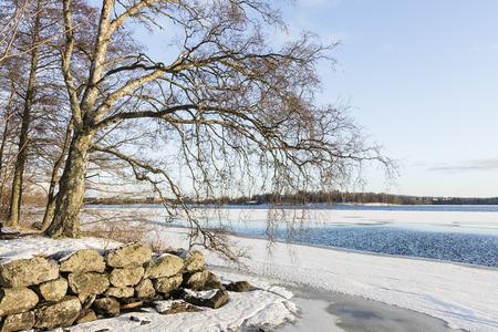 Vue Wintry au lac dégelé Banque d'images - 53661925