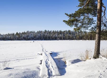 Lakescape Wintry Finlande Banque d'images - 53666541