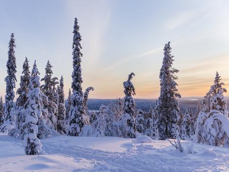 Beautiful wintry sunset Reklamní fotografie