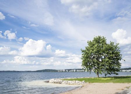 Journée ensoleillée d'été à côté du lac Banque d'images - 60171445