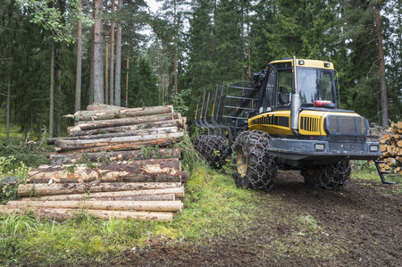 forwarder: Forestry in Finland Stock Photo