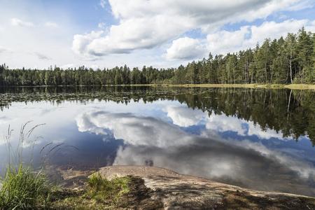 Paysage du lac Beuautiful dans la journée d'été sans vent Banque d'images - 65560126