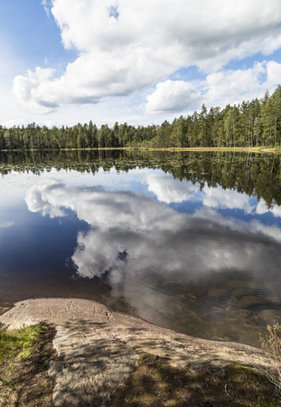 windless: Beuautiful lake landscape in windless summer day