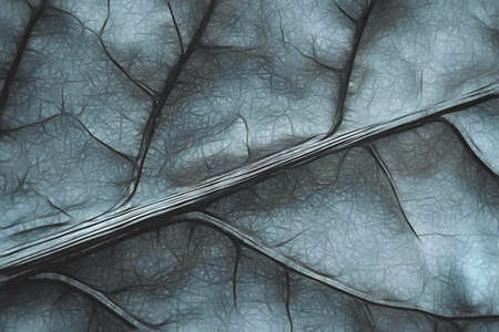 Macro leaf veins pattern illustration