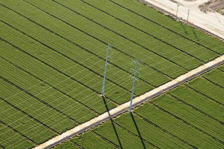 lines: High voltage power transmission lines viewed from the air. Green field in the background. Stock Photo