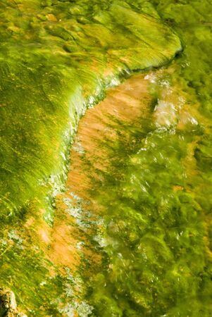 colorful abstract pattern of algae in a thermal pool in the geyser basins of Yellowstone National Park photo