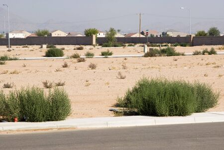 undeveloped lots in a residential housing development Stock Photo - 5326593