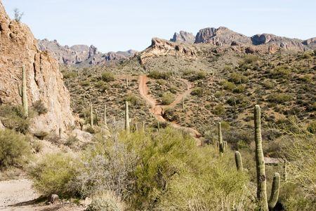 trails through the desert scenery in the Arizona wilderness Reklamní fotografie