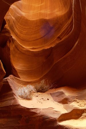 Light reflects from the sandstone walls of a slot canyon in Arizona. photo