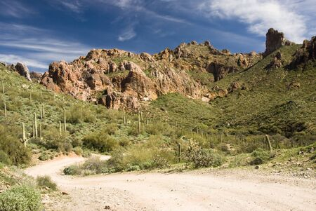 scenic view of the Sonoran desert wilderness in Arizona photo