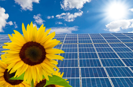 panel: Solar cells and sunflower on a sunny day