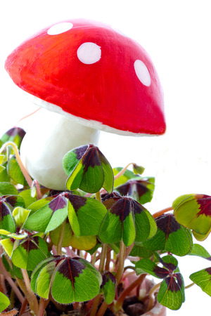 chimney sweep: Happy new year with fly agaric