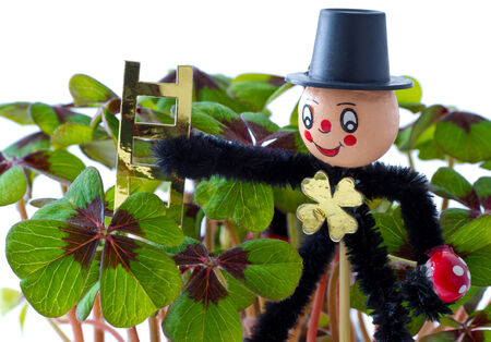 chimney sweep: Happy new year card with four-leaf clover Stock Photo